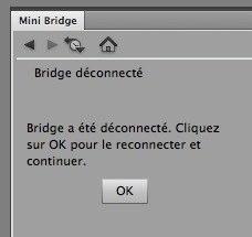 Mini-Bridgesansbriodge